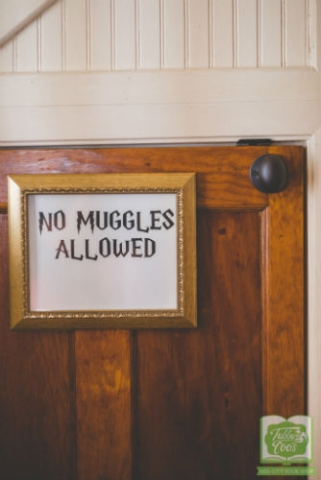 Tubby & Coo's Harry Potter Room Under Stairs No Muggles Allowed